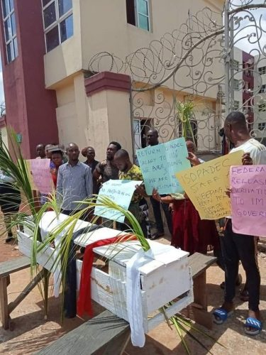 Staff protest with casket in Imo State