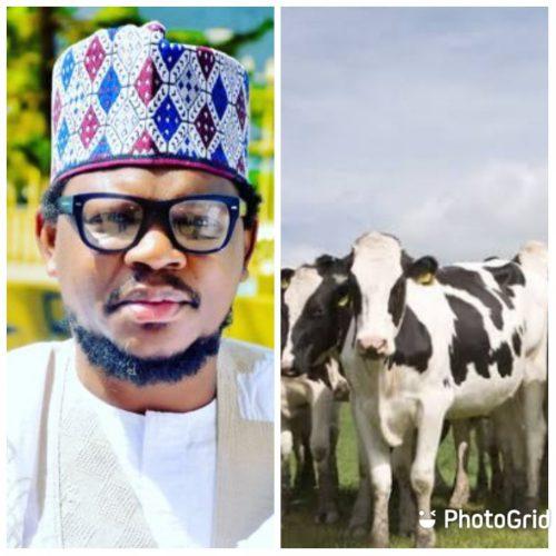 Adamu Garba on cows than oil and gas