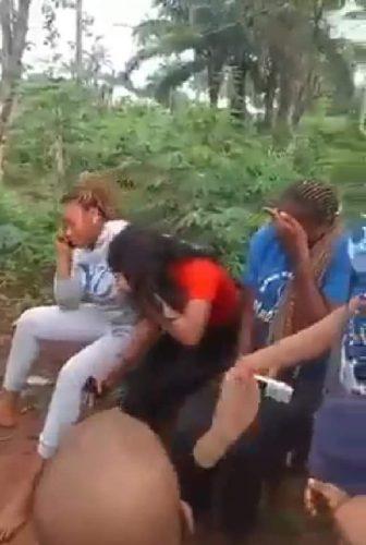 Herdsmen kidnaps Okigwe-Arondizuogu-Akokwa road